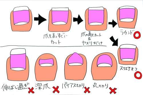 爪の正しい切り方